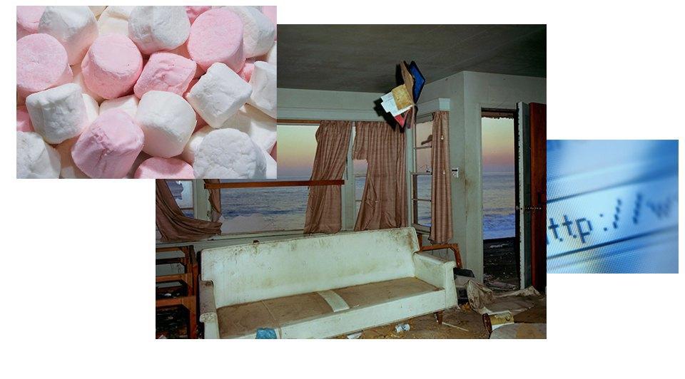 Мягкость, Фотографии Джона Дивола, Интернет. Изображение № 4.