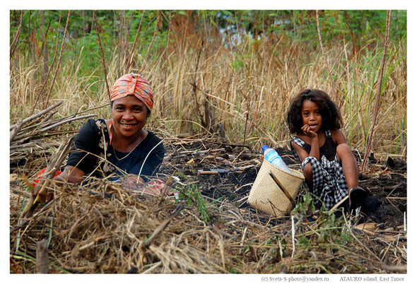 Восточный Тимор. Изображение № 17.