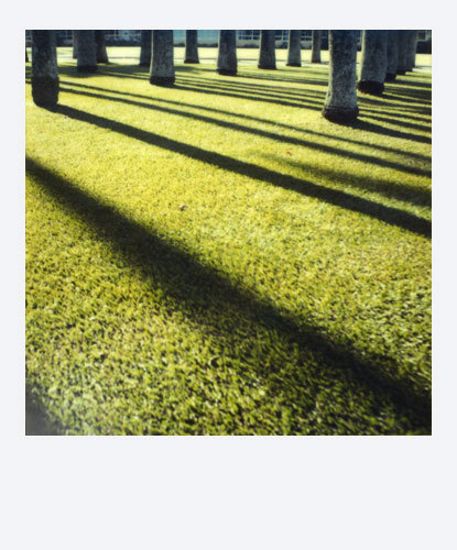 Jean-Frdric Bourdier иего полароидные снимки. Изображение № 15.