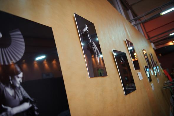 1-й Российский фестиваль фламенко. Изображение № 21.