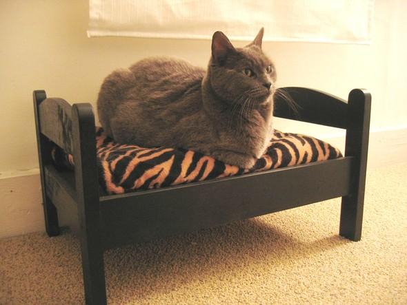IKEA - интерьер для котов. Изображение № 29.