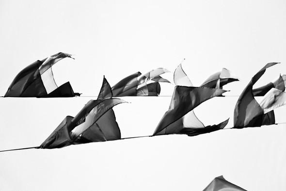 Черно-белые путешествия. Изображение № 8.