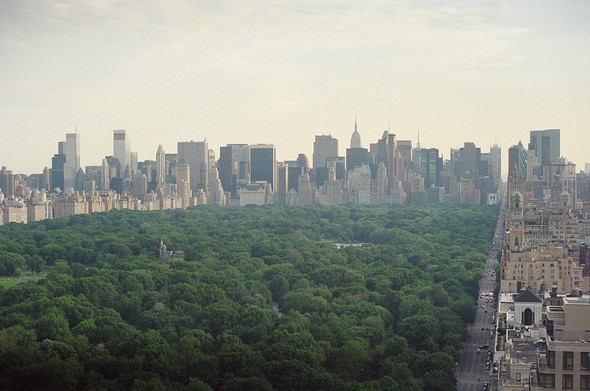 NYC saved mylife. Изображение № 2.