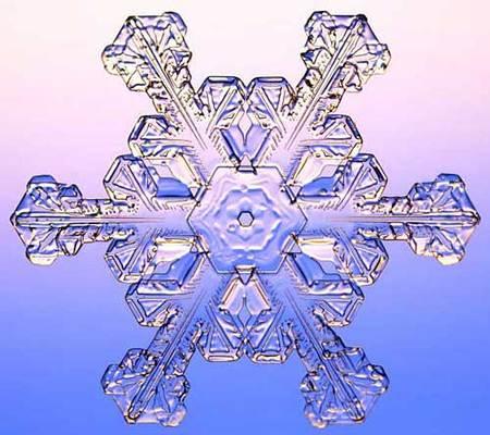 Снежинки – временные произведения искусства. Изображение № 6.