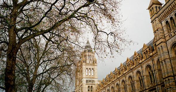 Изображение 1. Лондон. Четверг.. Изображение № 3.