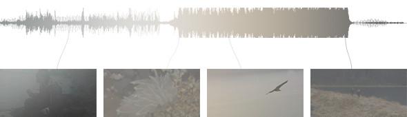 Изображение 1. Клип дня: Caribou.. Изображение № 1.