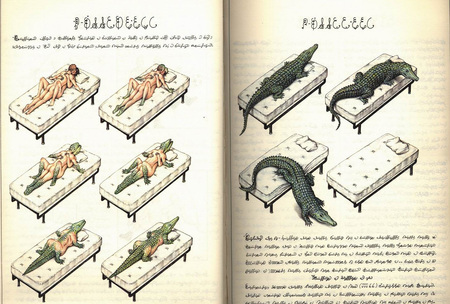 CODEX SERAPHINIANUS самая странная книга. Изображение № 1.