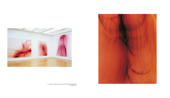 7 альбомов об абстрактной фотографии. Изображение № 15.