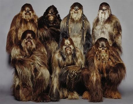 Вуки (Wookiee). Изображение № 1.