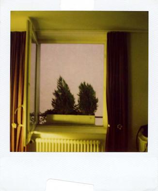 20 фотоальбомов со снимками «Полароид». Изображение №153.