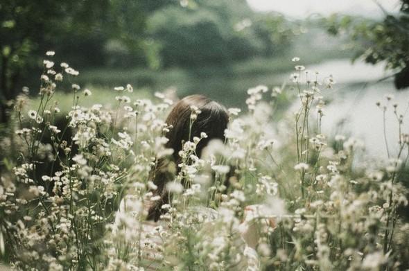 Li Hui Photography. Изображение № 5.