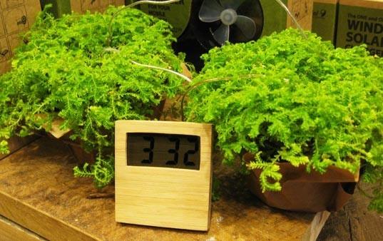 Уникальные биочасы: умрут растения – погибнет время. Изображение № 1.