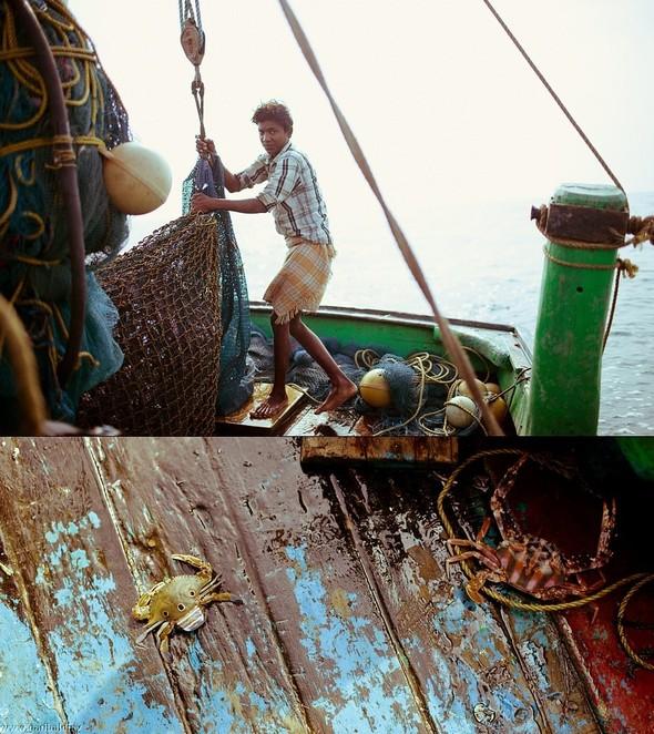 Shrimp boat MFR 646 DF GOA - Non stop. Изображение № 13.