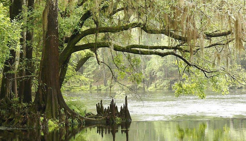Идеи для путешествий: места, которые скоро затопит. Изображение № 12.