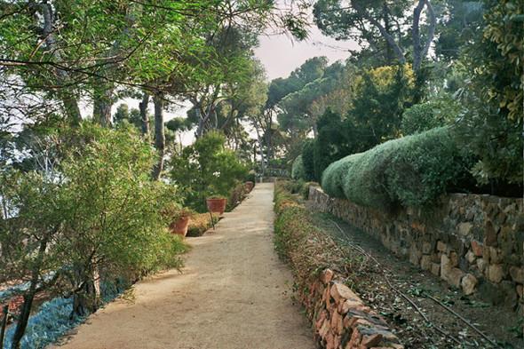 Ботанический сад. Изображение №53.