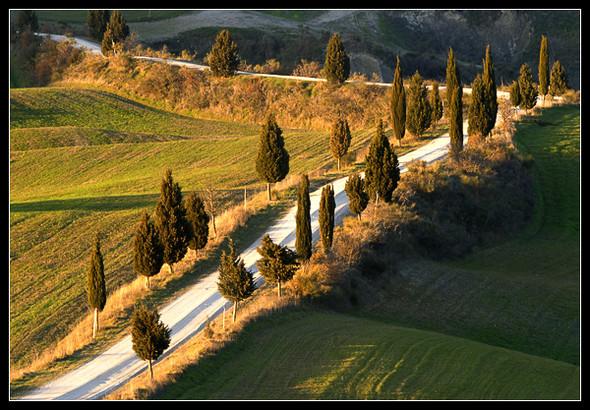 Очарованный солнцем Michele Berti. Изображение № 14.