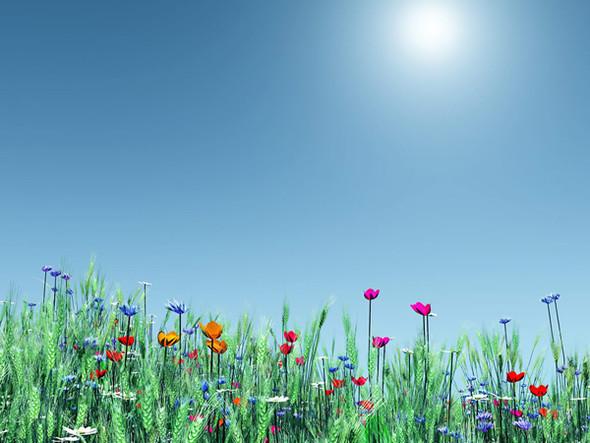 Весна идет! Создаем весеннее настроение. Изображение № 28.