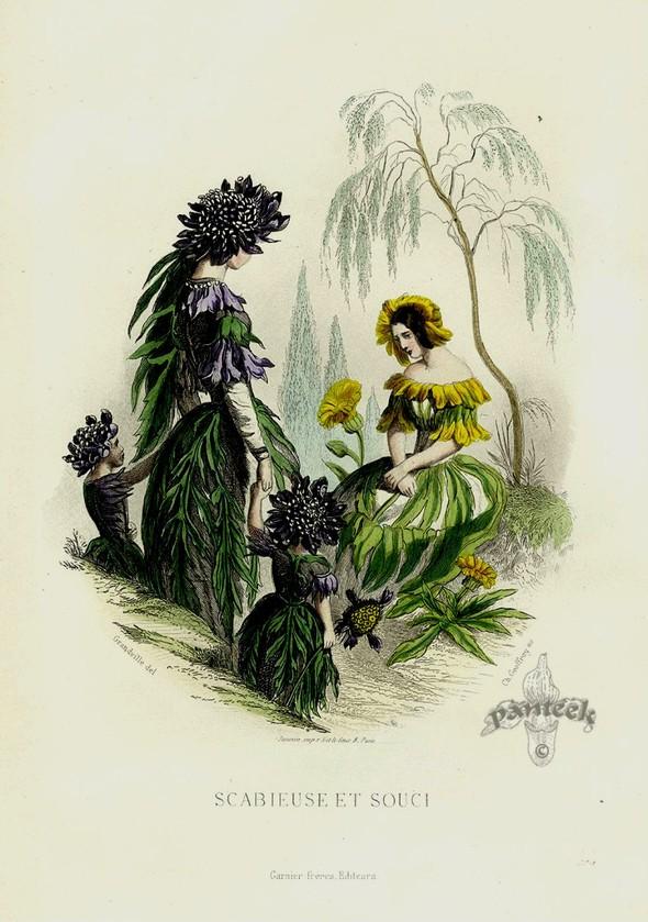 Винтажные иллюстрации J.J. Grandville. Изображение № 19.