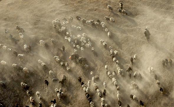 Афганистан. Военная фотография. Изображение № 32.