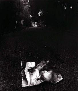 Jerry Uelsmann. Изображение № 14.