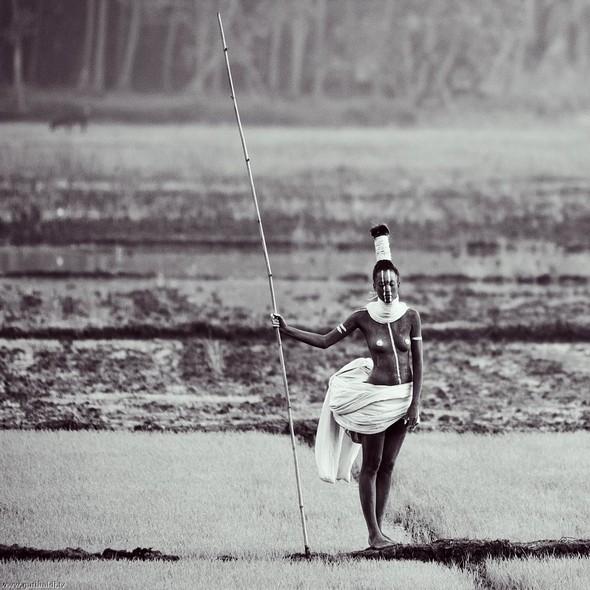 Дочь людоеда - non stop. Изображение № 10.