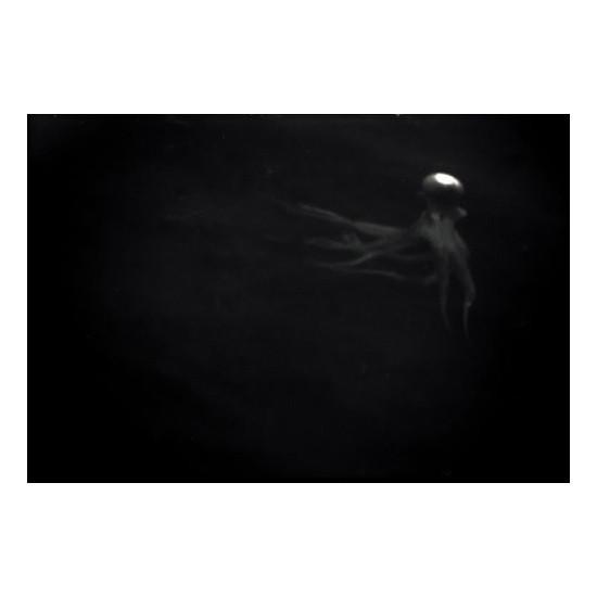 Изображение 50. Фотограф: Наташа Климчук.. Изображение № 46.