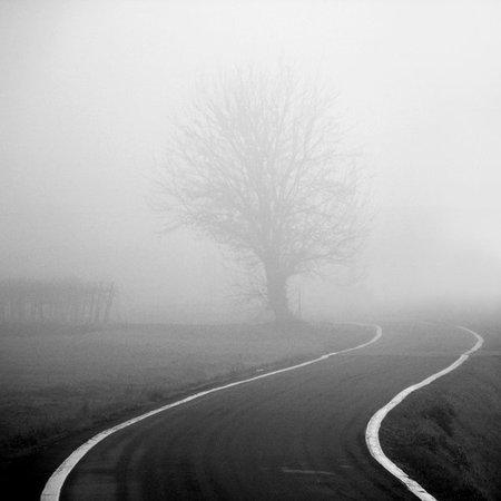 Туманные фотографии. Изображение № 31.