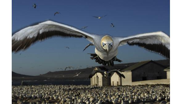 Изображение 8. Объявлены победители премии World Press Photo 2010.. Изображение № 8.
