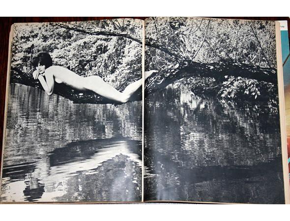 Части тела: Обнаженные женщины на фотографиях 50-60х годов. Изображение № 154.
