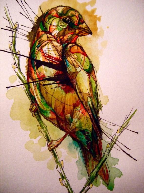 Птицы Abby Diamond. Изображение № 3.