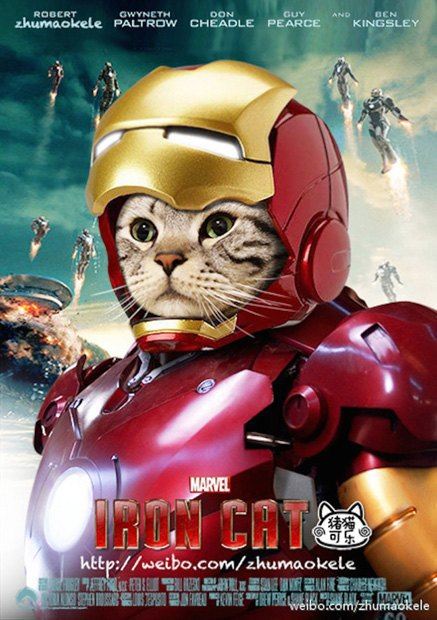 Котик косплеит супергероев. Изображение № 4.