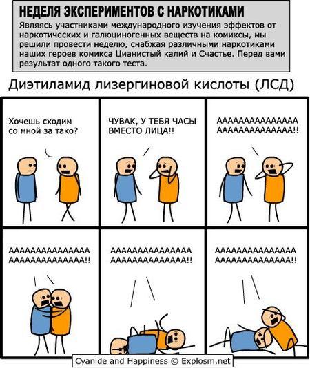 Цианистый калий исчастье. Изображение № 6.