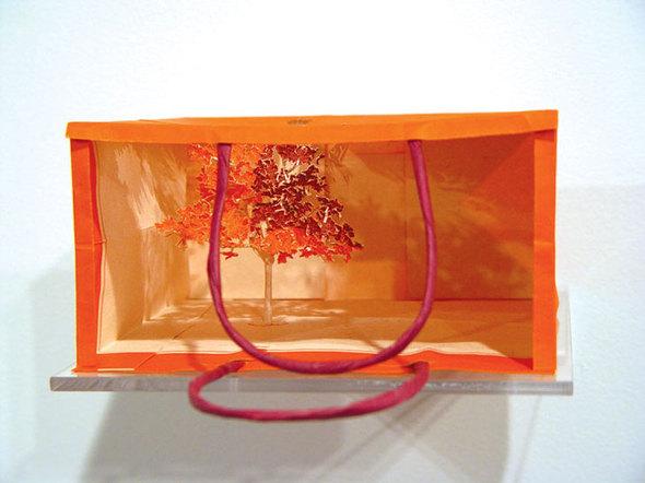 Когда впакетах вырастают деревья. Изображение № 7.
