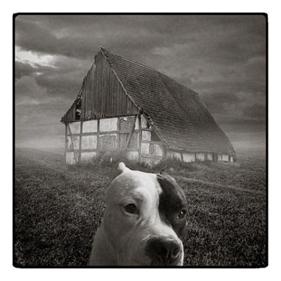 Польский фото-художник Michal Giedrojc. Изображение № 7.