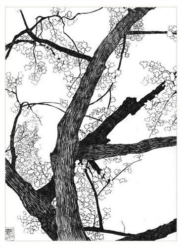 Изображение 16. Иллюстратор: Симон Прадес.. Изображение № 16.
