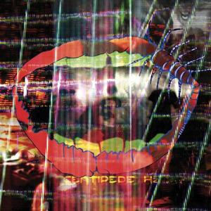 Попугай оценивает альбомы сентября. Изображение № 5.