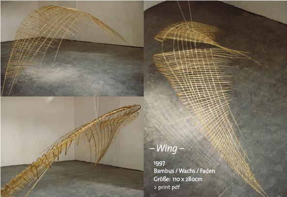 Воздушные змеи мечты. Изображение № 3.