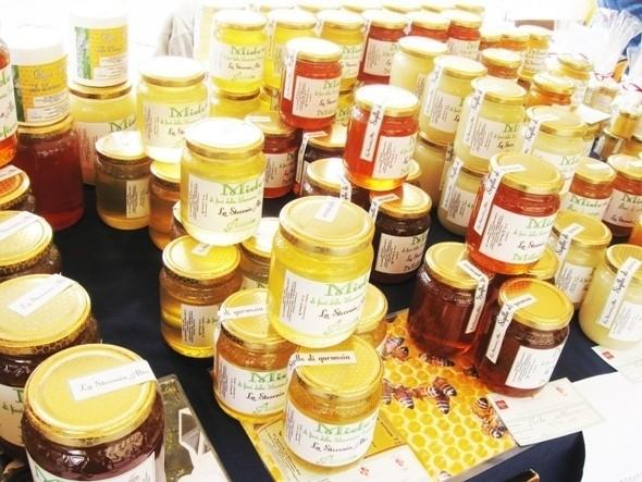 Изображение 28. Тосканское масло.. Изображение № 37.