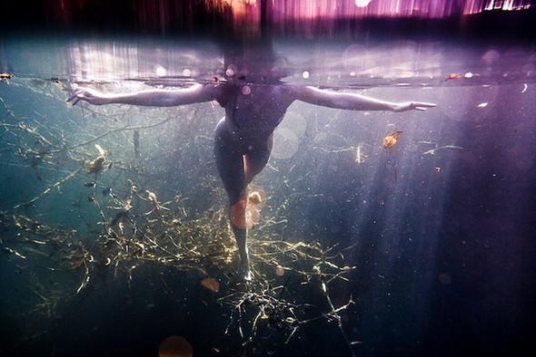 Подводная съемка OmniPhantasmic. Изображение № 8.