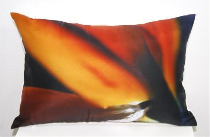 Новая коллекция дизайнерских подушек с фотографиями. Изображение № 3.