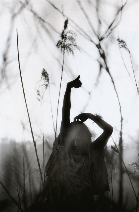Эйко Хосоэ - фотография, как танец на грани. Изображение № 13.