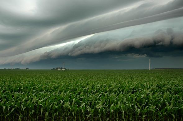 Переменная облачность. Изображение № 50.