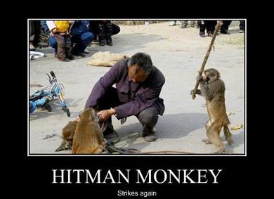 В мире животных: Герои «Мадагаскара» в мемах, рекламе и видеороликах. Изображение № 97.