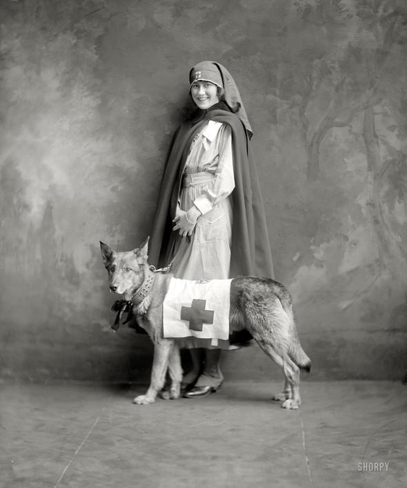 Фотографии с животными, начало прошлого века. Изображение № 15.