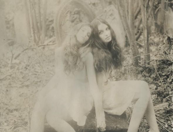 Witches vs. Fairies. Изображение № 5.