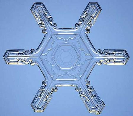 Снежинки – временные произведения искусства. Изображение № 10.