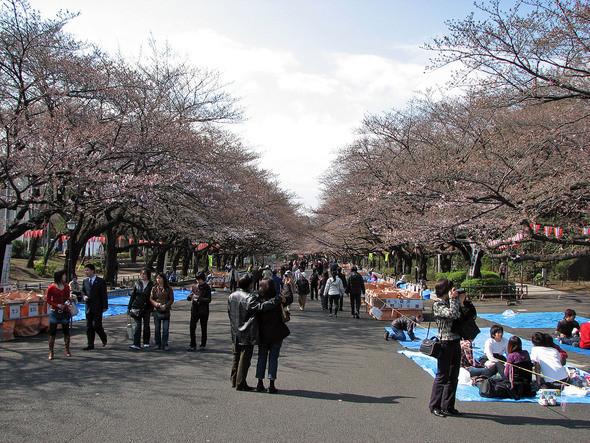 Изображение 46. 7 лучших городских парков мира.. Изображение № 7.