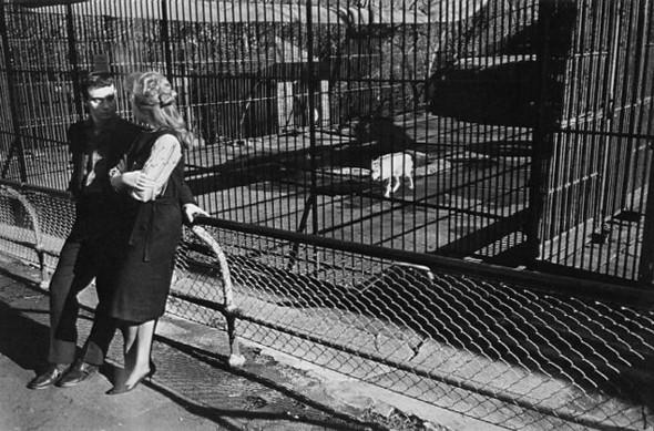 Гарри Виногранд о фотографии. Изображение № 12.