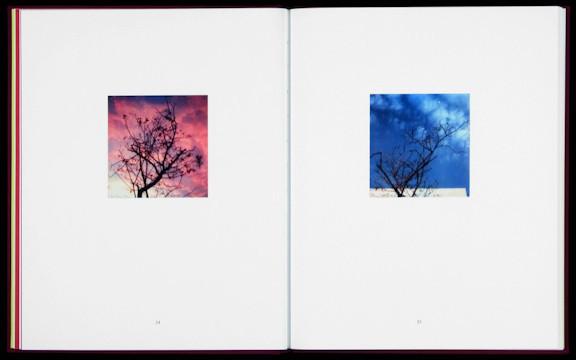 20 фотоальбомов со снимками «Полароид». Изображение №244.