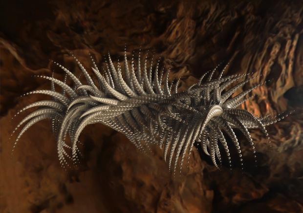 Как может выглядеть ДНК инопланетянина. Изображение № 2.